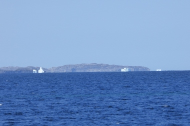 Icebergs from the ferry to Fogo Island, May 27, 2016